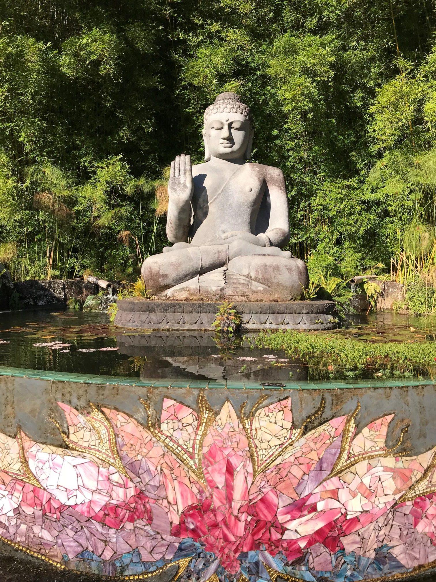 Stage Ashtanga Yoga aux Magnolias